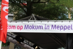 07-08-2014-meppel-mokum-21-800x534