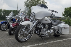 2014-06-01-kippige-veluwerit-0034