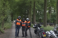 2014-06-01-kippige-veluwerit-0073